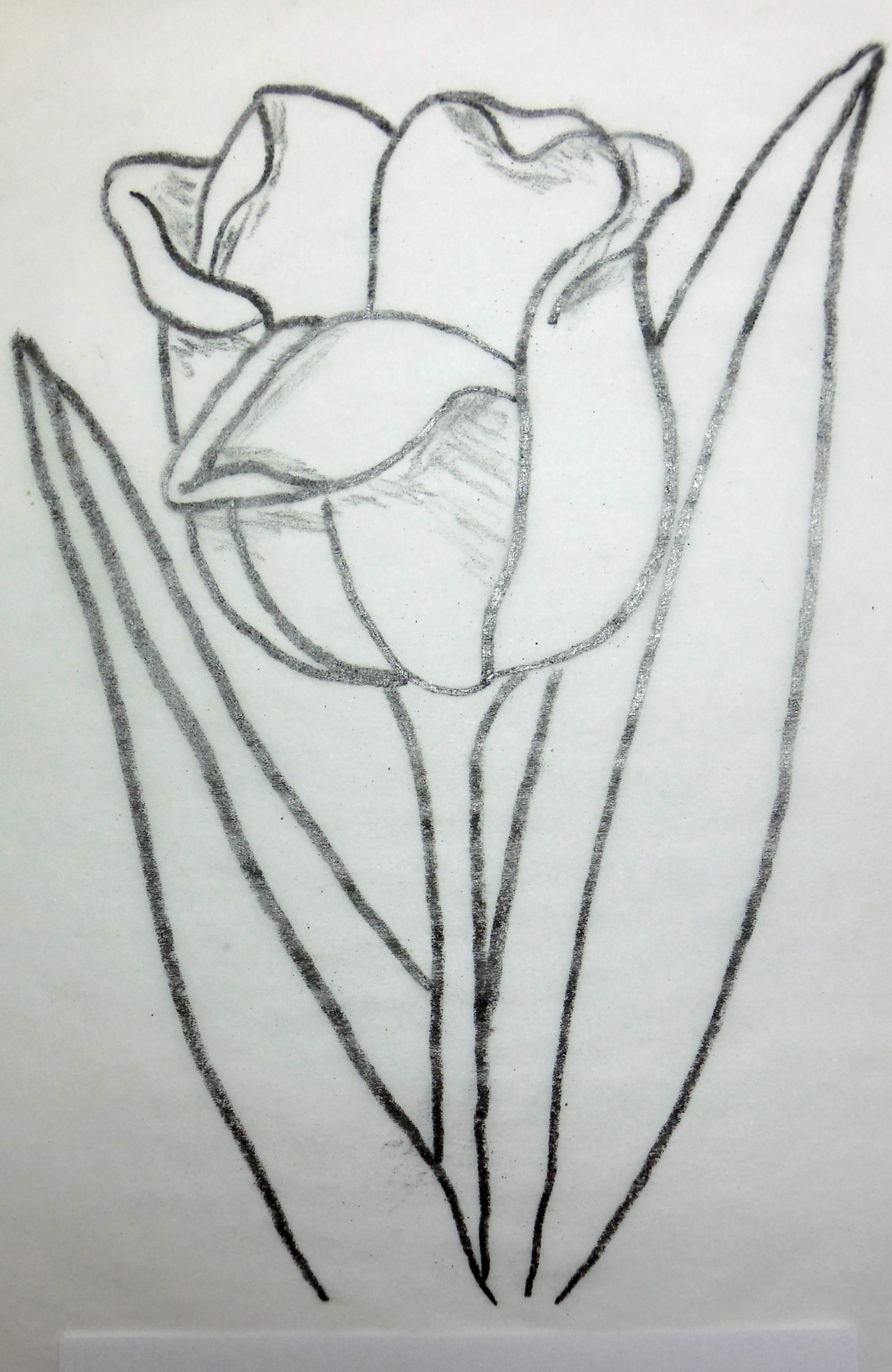 Tulip wood carving pattern